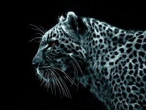 Leopard_-_background_windows_7